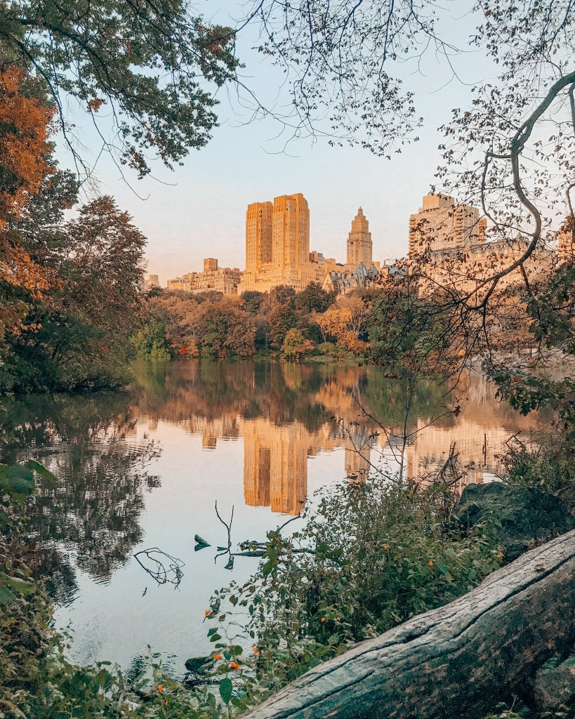 Central Park at Sunrise photo
