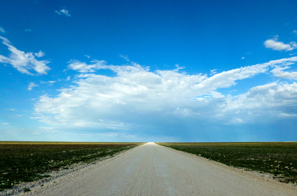 Etosha National Park, Namibia