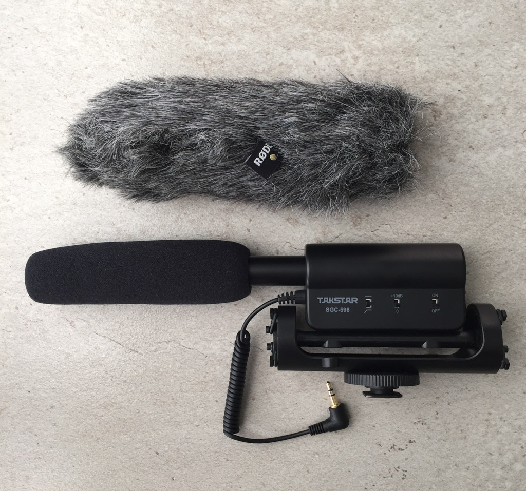 Takstar External Microphone and Rode Wind Muff