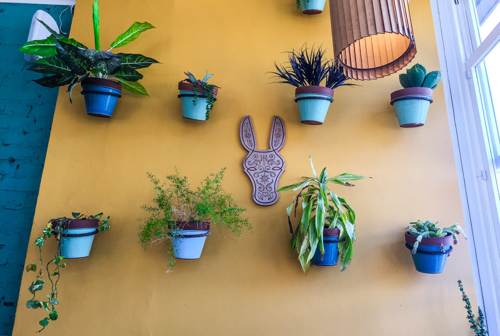The interior decor and cool design for the El Burro logo really add to the ambience