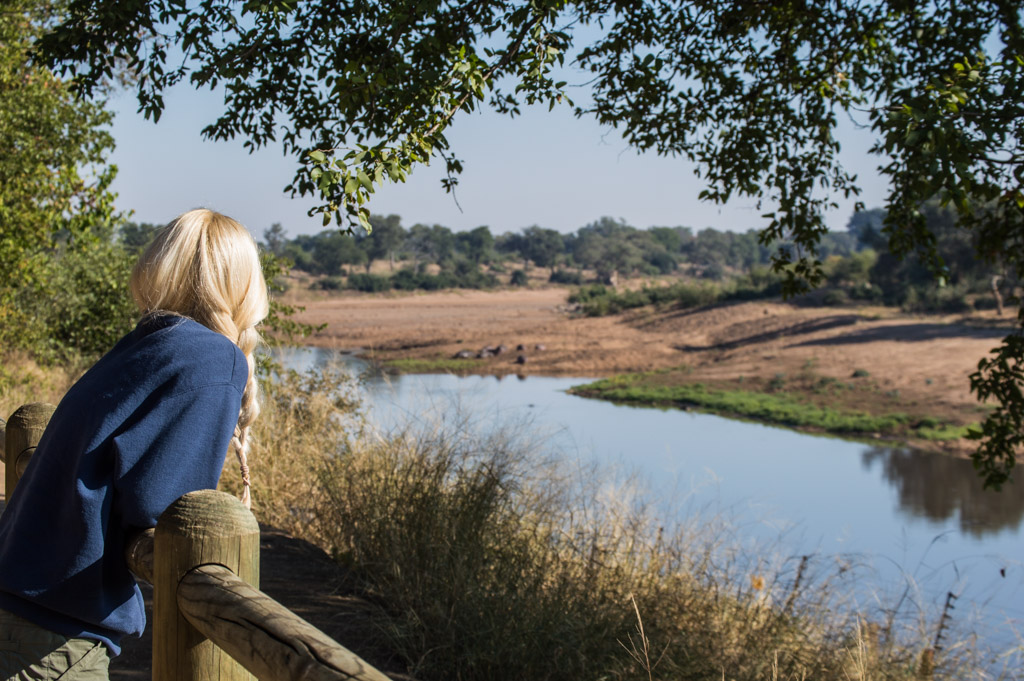 Looking at hippos at the Shingwedzi day visitors area!