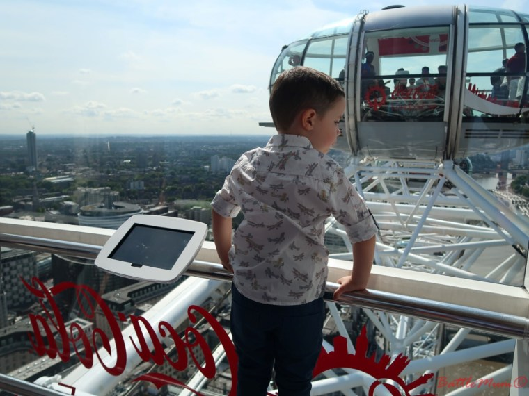 family day in london - BattleKid looking out of our london eye pod