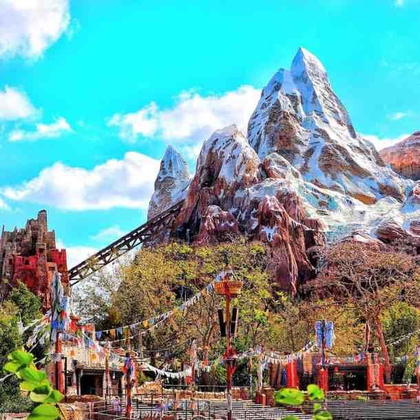Why You Should NEVER EVER Visit Disney World