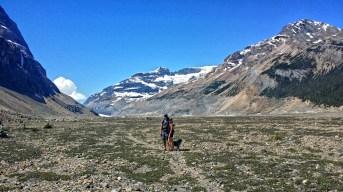 Saskatchewan Glacier Hike, Alberta, Canada
