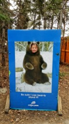 Little Bear, Calgary Zoo