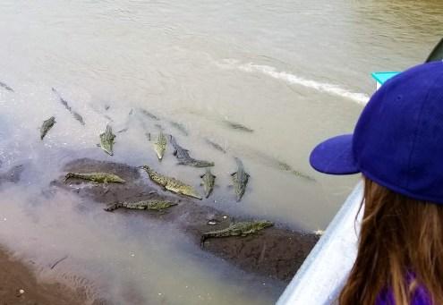 Rio Tarcoles, Crocodile Bridge, Costa Rica