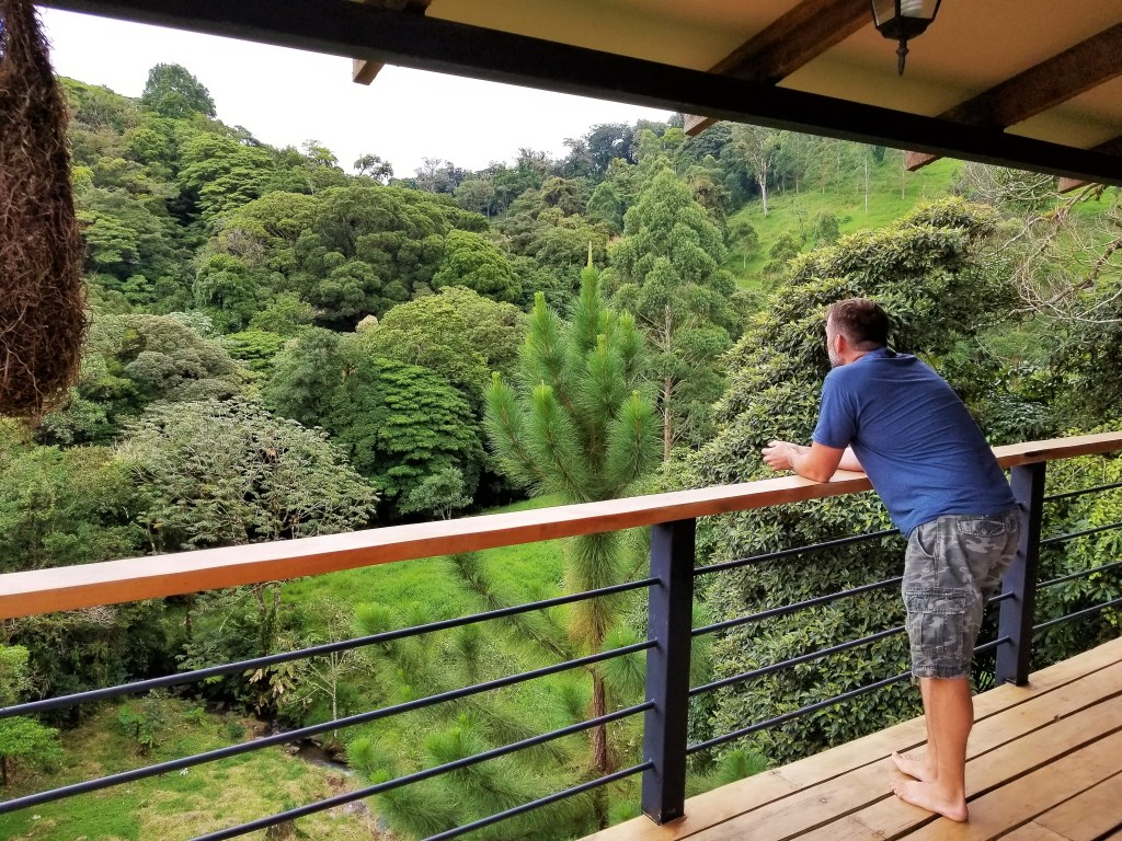View from the balcony of the Master Bedroom, Casa Mia, Monteverde
