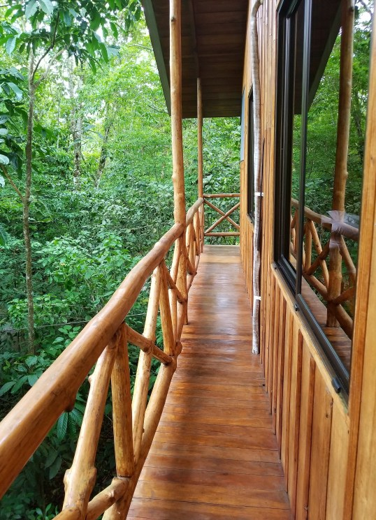Wrap Around Deck, Treehouse Hotel, Costa Rica