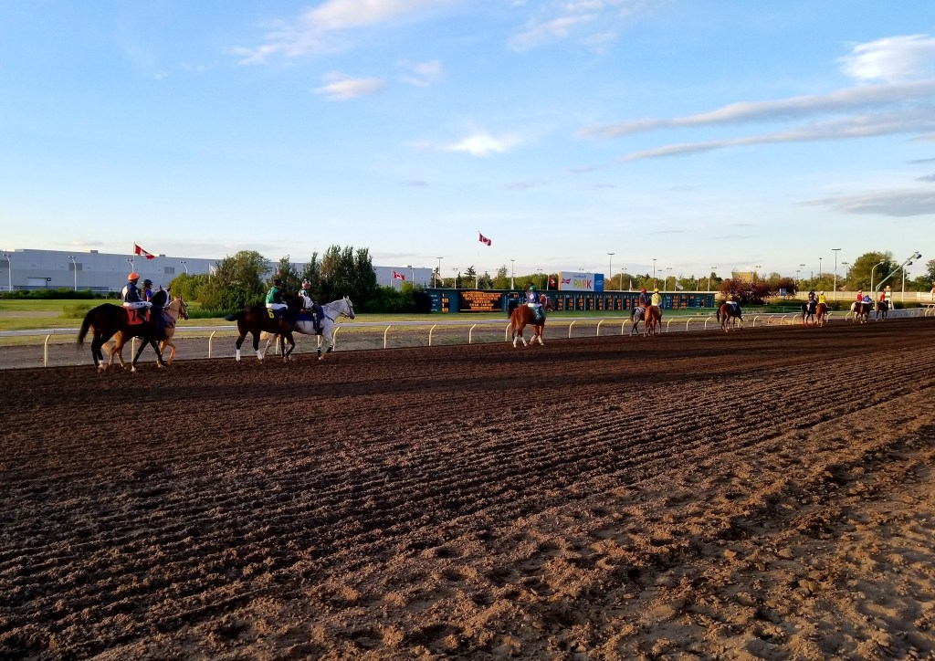 Thoroughbred Horse Racing, Edmonton