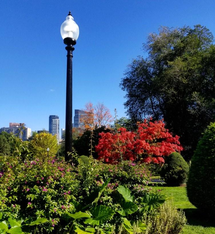 Boston Public Gardens, Boston