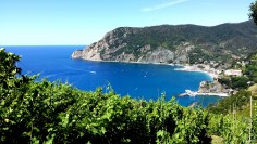 Along the Blue Path from Monterosso