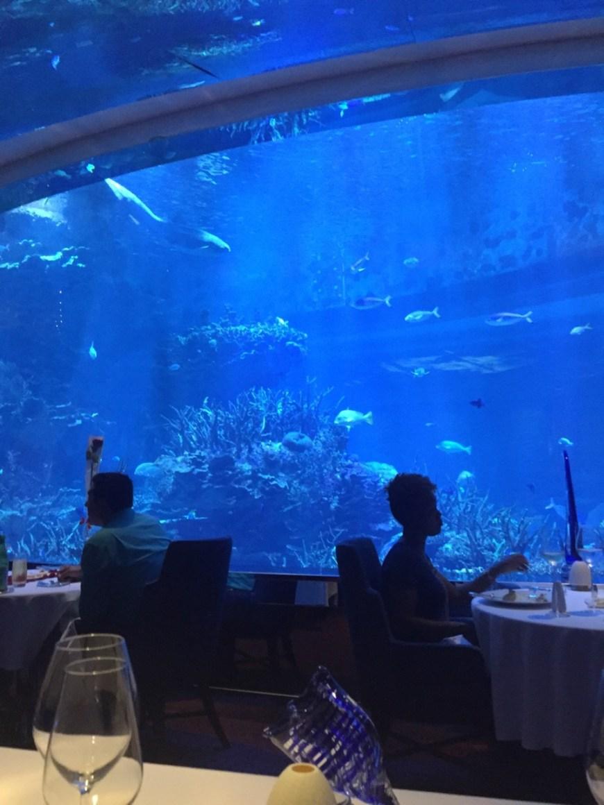 Restaurant fish tank
