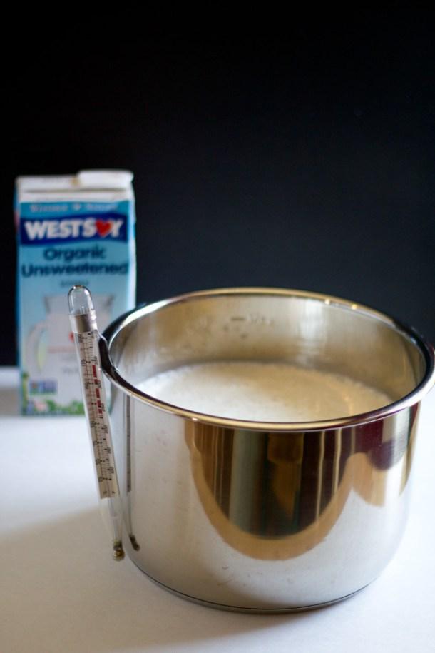 Homemade Non-Dairy Yogurt| https://passtheplants.com