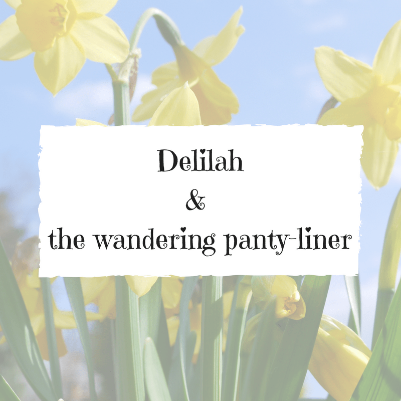Delilah & the wandering panty-liner
