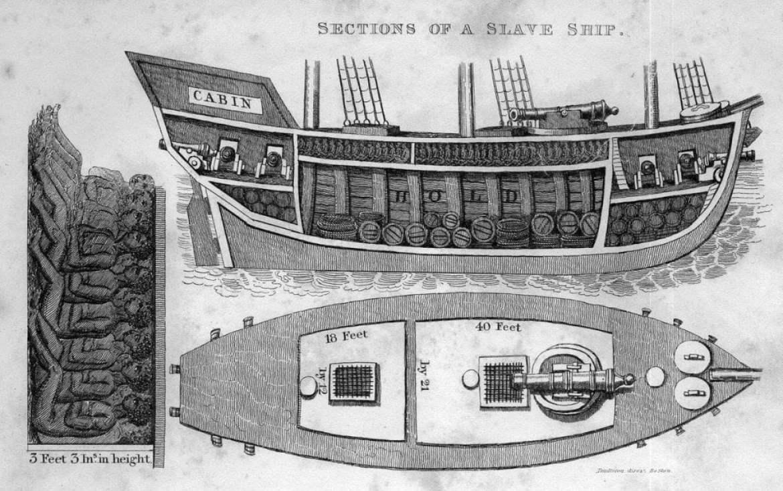 Sezione di una nave per il trasporto e commercio degli schiavi