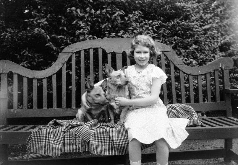 la regina Elisabetta II da bambina con i suoi Welsh Corgi