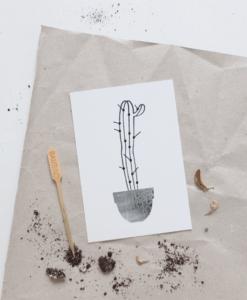 Carte Cactus Audrey Jeanne