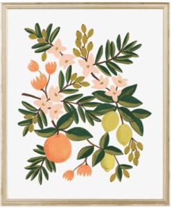 Affiche Rifle Paper Co Citrus Floral / 2 formats au choix