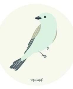 Stickers Oiseaux Minimel lot de 8