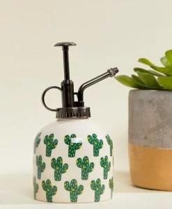 Brumisateur cactus et plantes