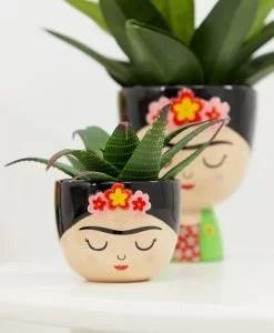 Cache-pot Frida Khalo Sass and Belle