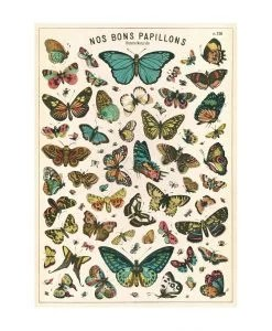Affiche Nos bons papillons Cavallini