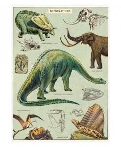 Affiche pédagogique Dinosaures Cavallini & Co