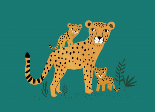 Carte Tigre et ses petits