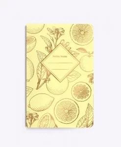 Carnet Lemonade Les Editions du Paon