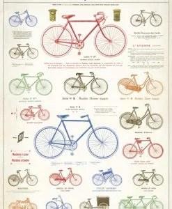 Affiche vélo rétro Cavallini