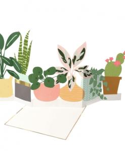 Carte à déplier Plantes Meri Meri