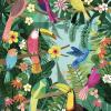 affiche oiseaux tropicaux petit monkey