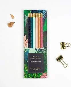 Set de 6 crayons à papier Wild