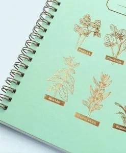 Carnet de recettes Mes aromates Les Editions du Paon
