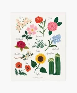 Affiche Florals of the USA Rifle Paper