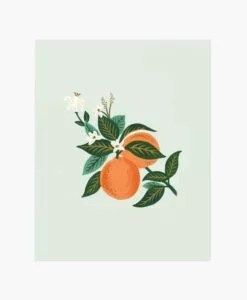 Affiche Oranges Rifle Paper