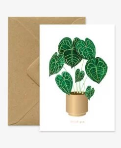 Carte merci Anthurium All The Ways To Say
