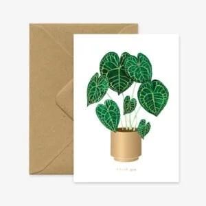 carte-botanique-ANTHURIUM-allthewaystosay-pastelshop