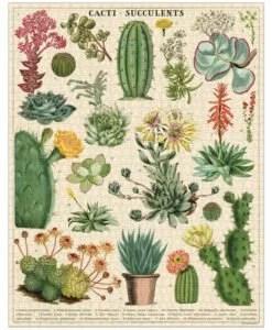 Puzzle Cactus et succulentes 1000 pièces Cavallini