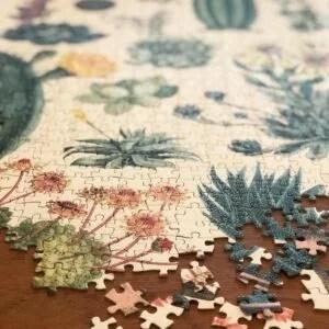 puzzle-1000-pieces-cactus-succulentes