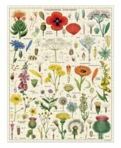 Puzzle Fleurs sauvages 1000 pièces Cavallini