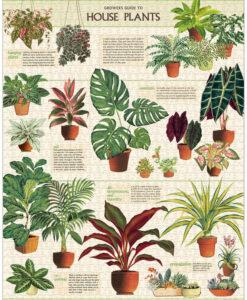 Puzzle Plantes d'intérieur 1000 pièces Cavallini