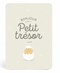Carte naissance Petit Trésor