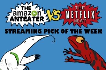 Amazon_V_Netflix