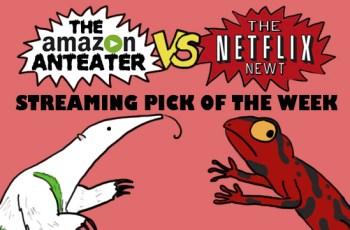 Amazon_V_Netflix_pink