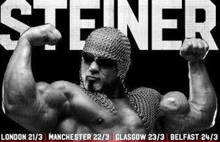 Steiner2