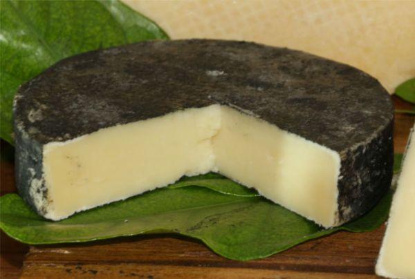 Rahu-Cheese-Pic