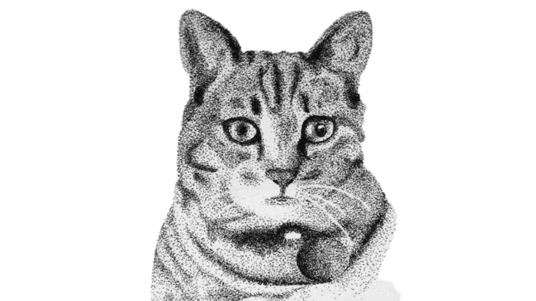 contoh gambar teknik pointilis