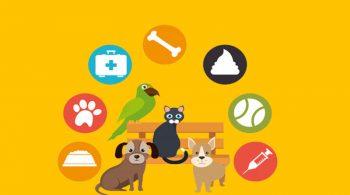 Bisnis Pet Shop: Ini Langkah Yang Harus Kamu Tahu