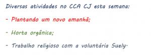 Atividades CCA CJ